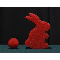 The miracle rabbit
